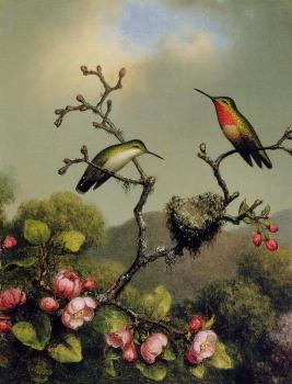 Martin Johnson Heade : Ruby Throat of North America