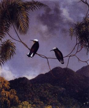 Martin Johnson Heade : Snowcap