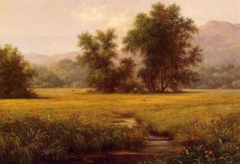 Martin Johnson Heade : The Meadow