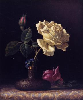 Martin Johnson Heade : The White Rose