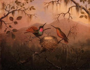Martin Johnson Heade : Two Hummingbirds at a Nest