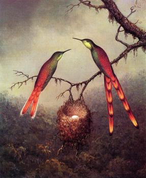 Martin Johnson Heade : Two Hummingbirds Garding an Egg