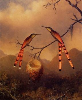 Martin Johnson Heade : Two Hummingbirds with Their Young