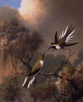 Martin Johnson Heade : Two Sun Gems on a Branch