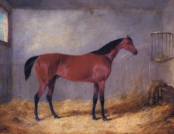 John Frederick Jr Herring : The Duke Of Grafton's Bolivar In A Stable