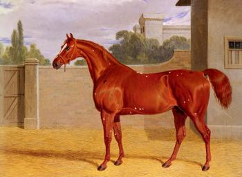 John Frederick Jr Herring : Comus, A Chestnut Racehorse in a Stable Yard