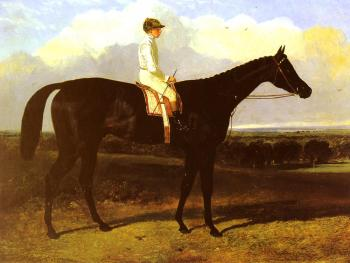 John Frederick Jr Herring : Jonathan Wild, a drak bay Race Horse, at Goodwood