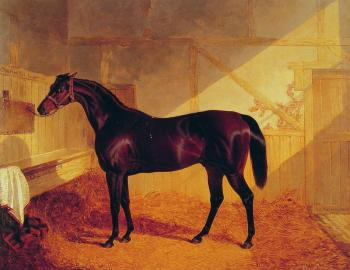 John Frederick Jr Herring : Mr Johnstone's Charles in a Stable