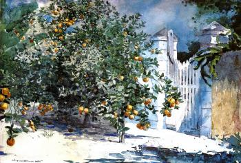 Winslow Homer : Orange Tree Nassau aka Orange Trees and Gate