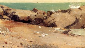 Rocky Coast and Gulls II