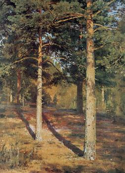 Ivan Shishkin : The Sun lit Pines