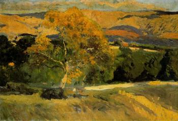 The Yellow Tree, La Granja