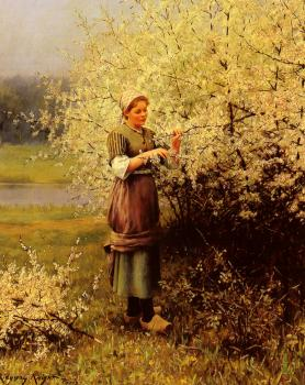 Louis Aston Knight : Spring Blossoms