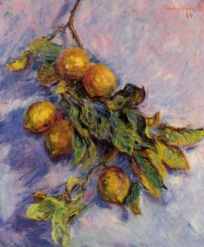 Claude Oscar Monet : Lemons on a Branch