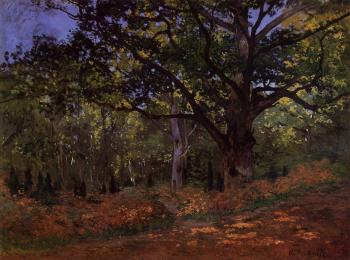 Claude Oscar Monet : The Bodmer Oak, Fontainebleau