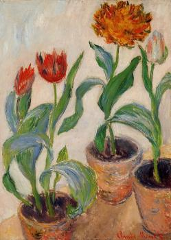 Claude Oscar Monet : Three Pots of Tulips