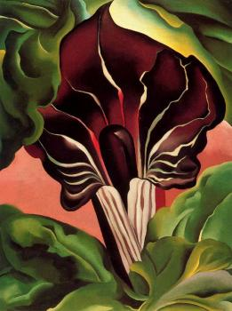 Jack in the Pulpit II