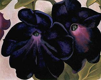 Georgia O Keeffe : Black and Purple Petunias