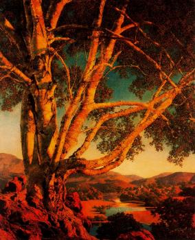 Maxfield Parrish : Old White Birch