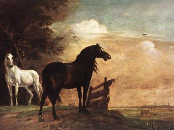 Paulus Potter : Horses In A Field