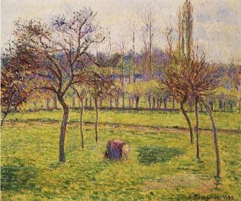 Camille Pissarro : Apple Trees in a Field