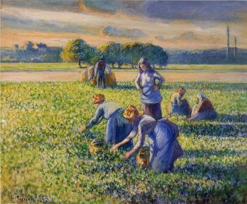 Picking Peas II