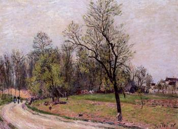 Edge of the Forest in Spring, Evening