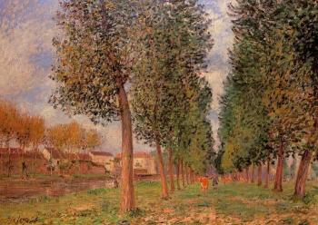 Lane of Poplars at Moret, Cloudy Morning