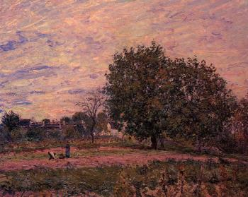 Alfred Sisley : Walnut Trees, Sunset, Early Days of October
