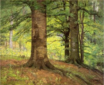 Theodore Clement Steele : Beech Trees