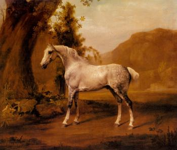 George Stubbs : A Grey Stallion In A Landscape