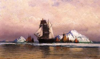Fishing Fleet off Labrador II