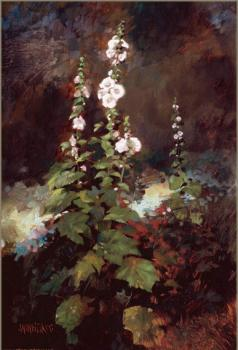 William Whitaker : Santa Fe Garden Corner