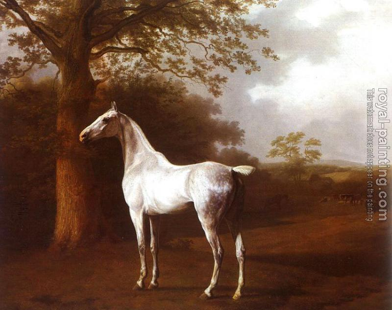 Jacques-Laurent Agasse : White Horse in Pasture