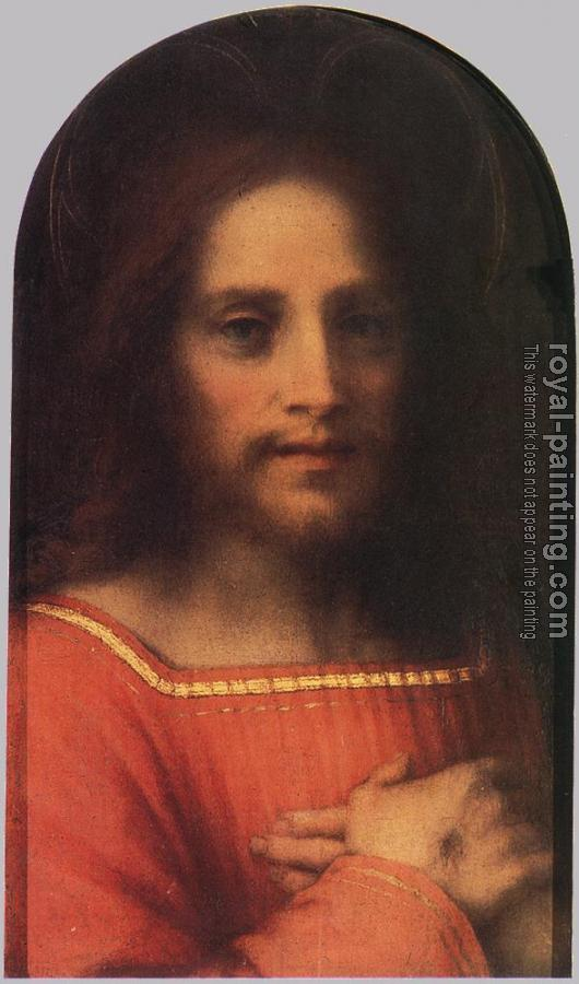 Andrea Del Sarto : Christ the Redeemer