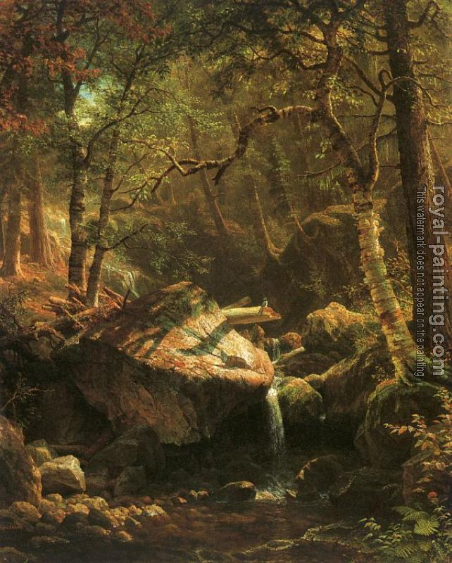Albert Bierstadt : The Mountain Brook
