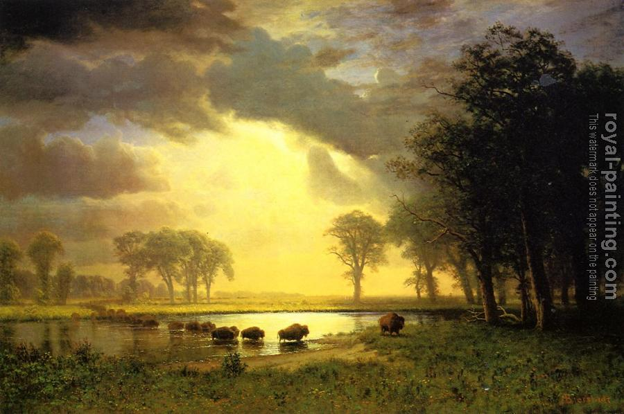 Albert Bierstadt : The Buffalo Trail