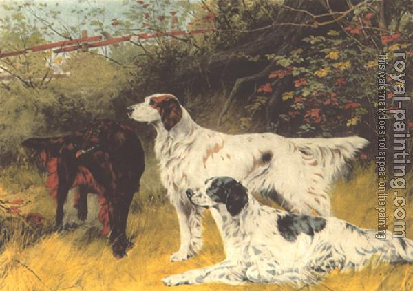 Thomas Blinks : English Setters and Gordon Setters