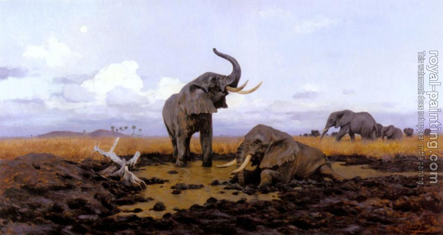 Friedrich Wilhelm Kuhnert : In The Twilgiht Elephants