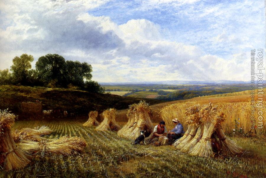 Snr George Cole : Harvest Field