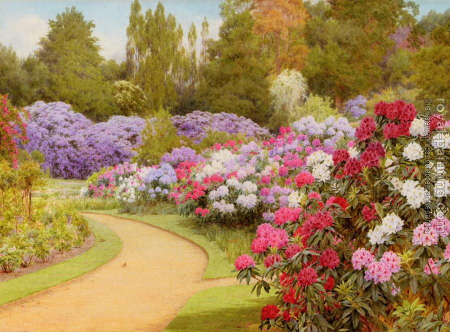 George Marks : The Rhododendron Walk