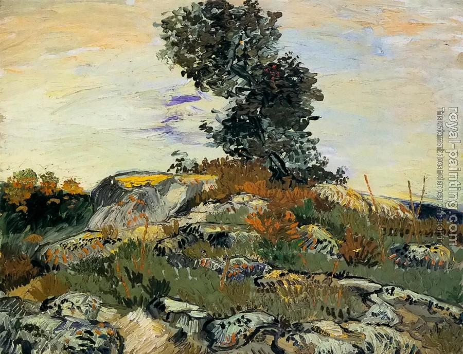 Vincent Van Gogh : Rocks with Tree