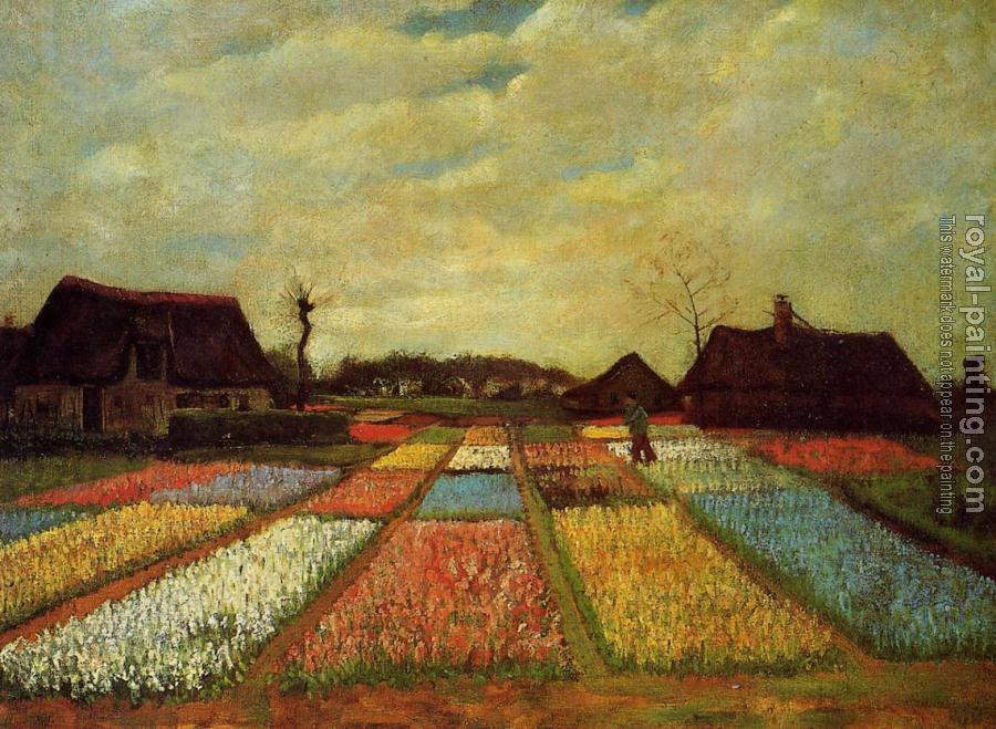 Vincent Van Gogh : Bulb Fields