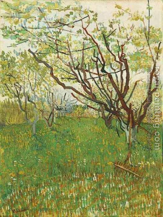 Vincent Van Gogh : Orchard in Blossom