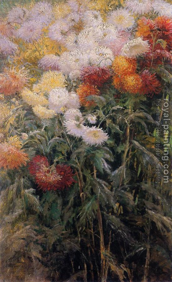 Gustave Caillebotte : Clump of Chrysanthemums Garden at Petit Gennevilliers