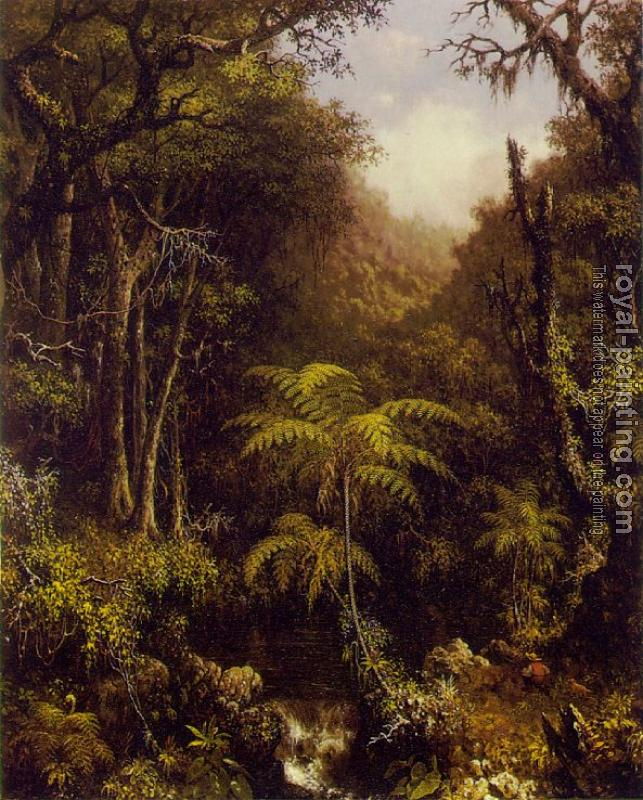 Martin Johnson Heade : Brazilian Forest