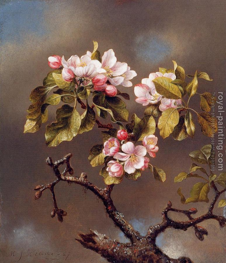 Martin Johnson Heade : Branch of Apple Blossoms against a Cloudy Sky