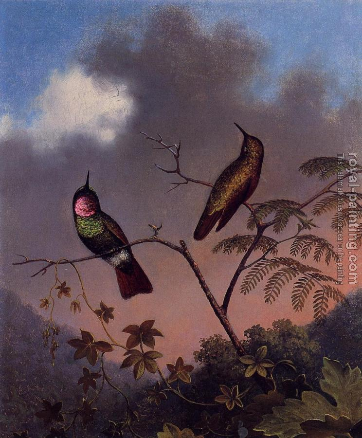 Martin Johnson Heade : Brazilian Ruby Hummingbirds