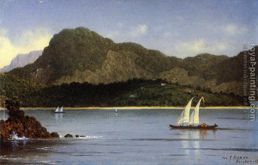 Martin Johnson Heade : Brazilian View