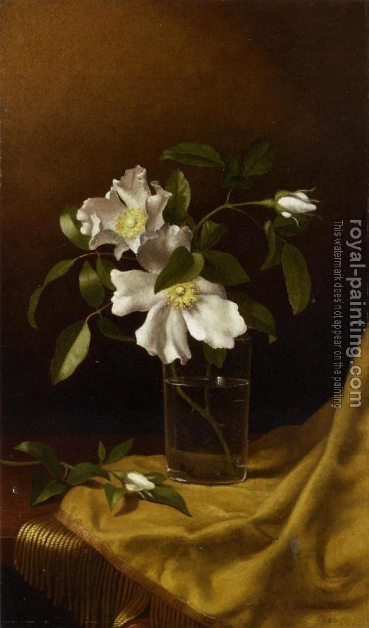 Martin Johnson Heade : Cherokee Roses in a Glass on Gold Velvet Plush